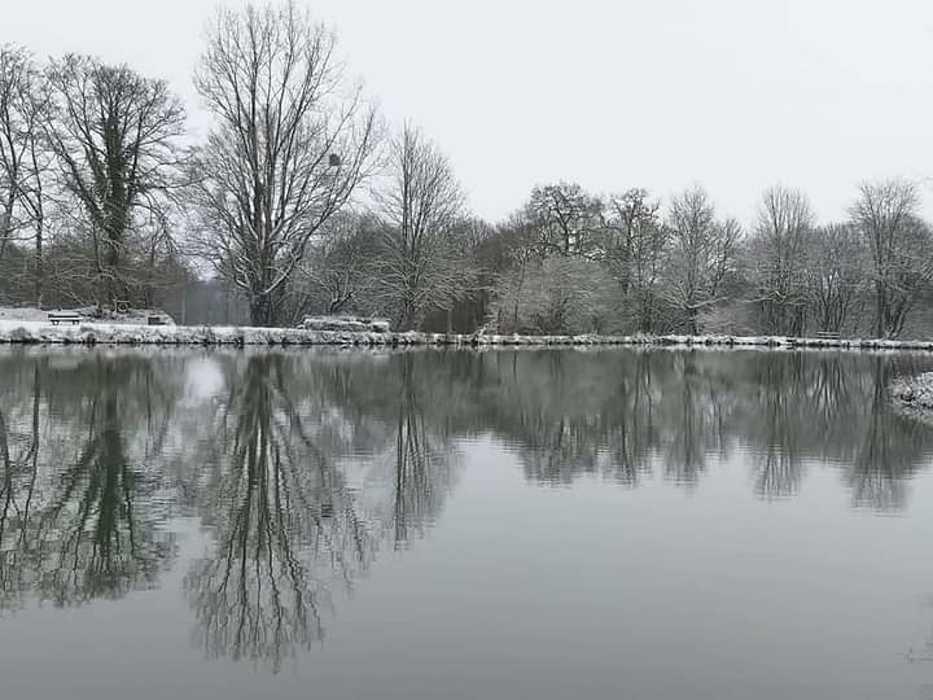 La neige à Saint-Martin-Des-Présfevrier 2021 leplandeau